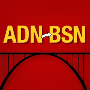 RN to BSN is a bridge program for working nurses